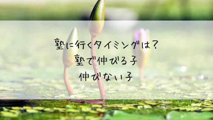 f:id:takoandwasabi:20200103132048j:plain