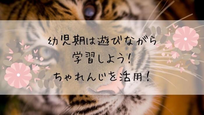 f:id:takoandwasabi:20200105143719j:plain