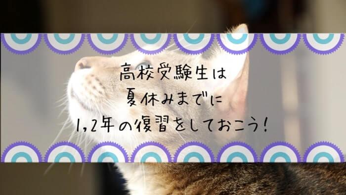 f:id:takoandwasabi:20200105143735j:plain