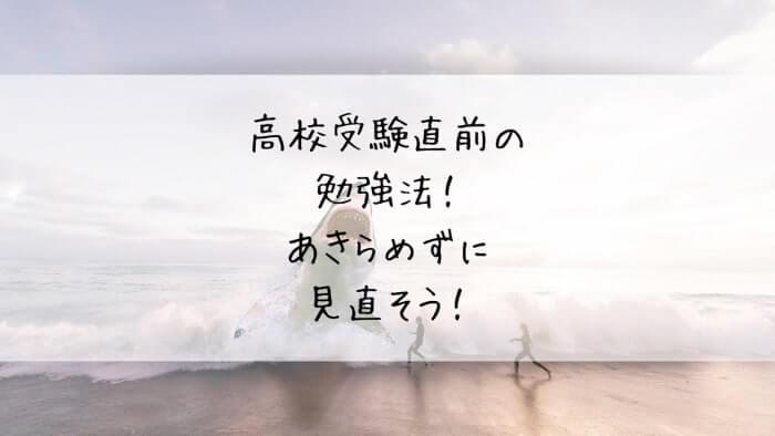 f:id:takoandwasabi:20200121231338j:plain