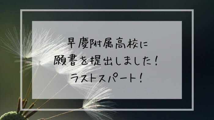 f:id:takoandwasabi:20200122232652j:plain