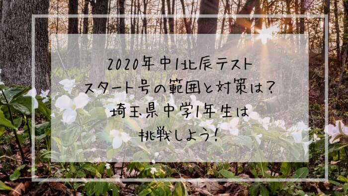 f:id:takoandwasabi:20200127010229j:plain