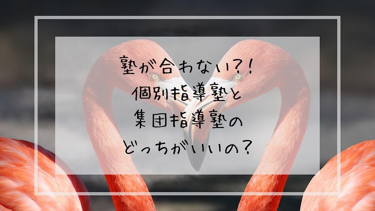 f:id:takoandwasabi:20200131063346j:plain
