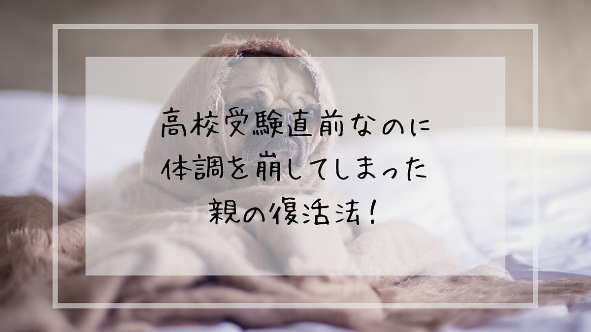 f:id:takoandwasabi:20200206214118j:plain