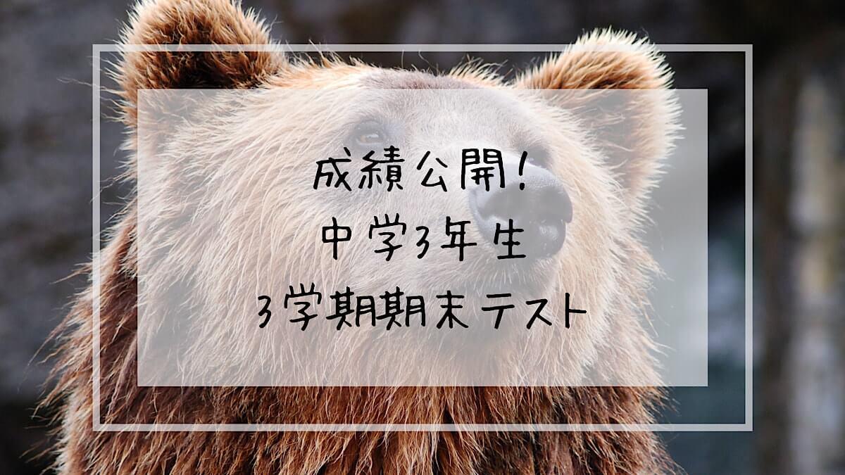 f:id:takoandwasabi:20200226233503j:plain