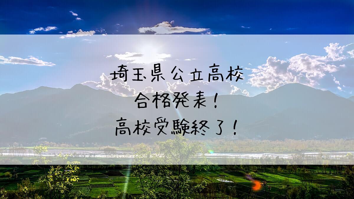 f:id:takoandwasabi:20200309231333j:plain