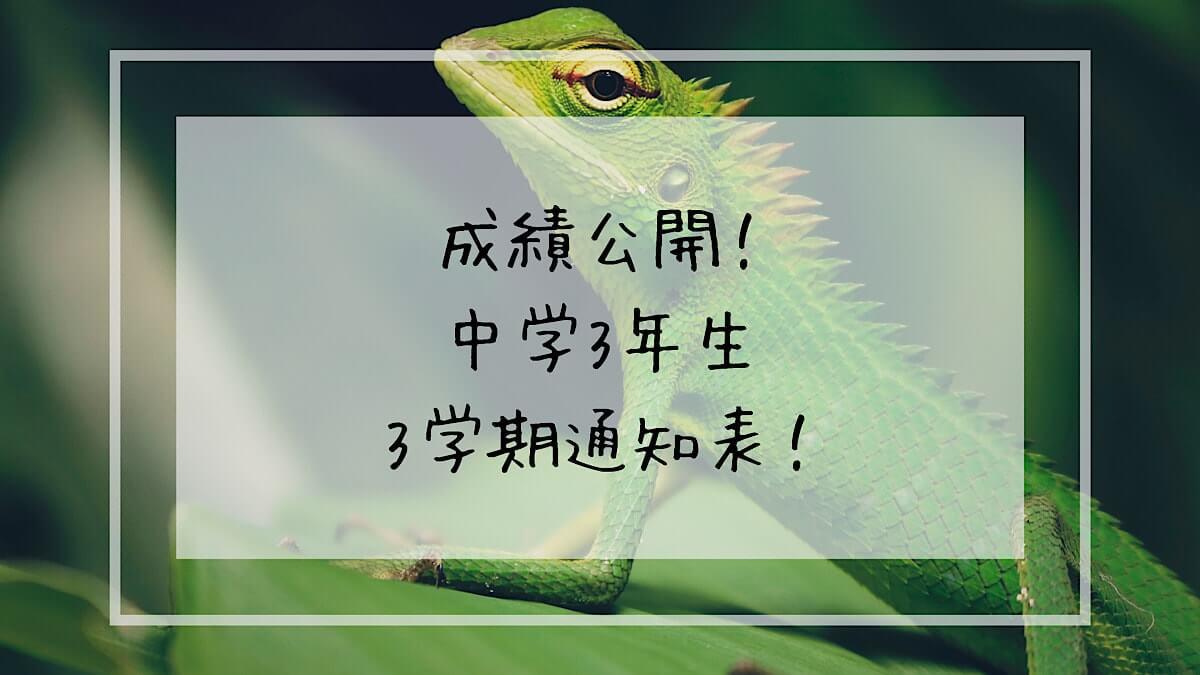 f:id:takoandwasabi:20200314224323j:plain
