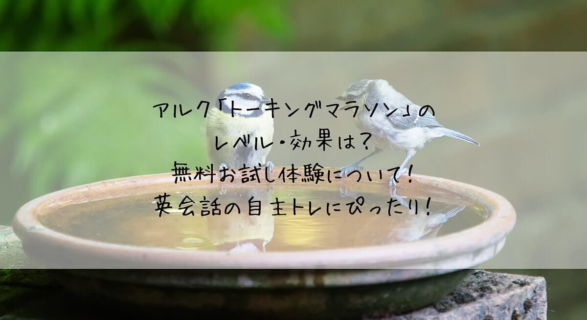 f:id:takoandwasabi:20200325002114j:plain