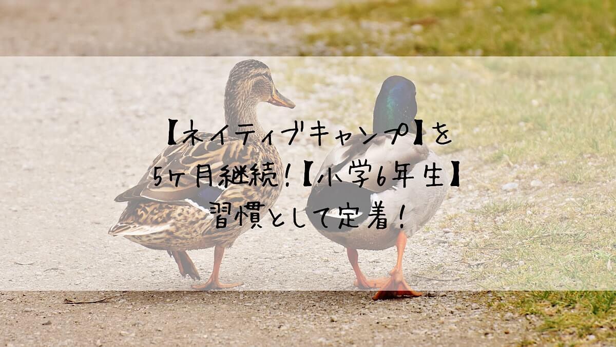 f:id:takoandwasabi:20200917003059j:plain