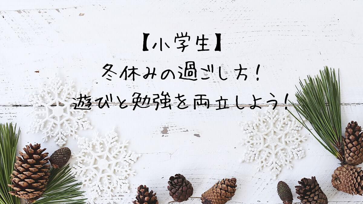f:id:takoandwasabi:20201230094747j:plain