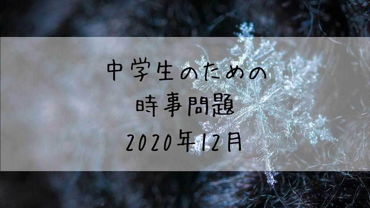 f:id:takoandwasabi:20210113065644j:plain
