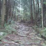琵琶峠に向かう石畳の道