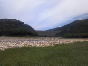 堰堤が見える景色