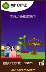ブログの樹 14本目 ひな祭り