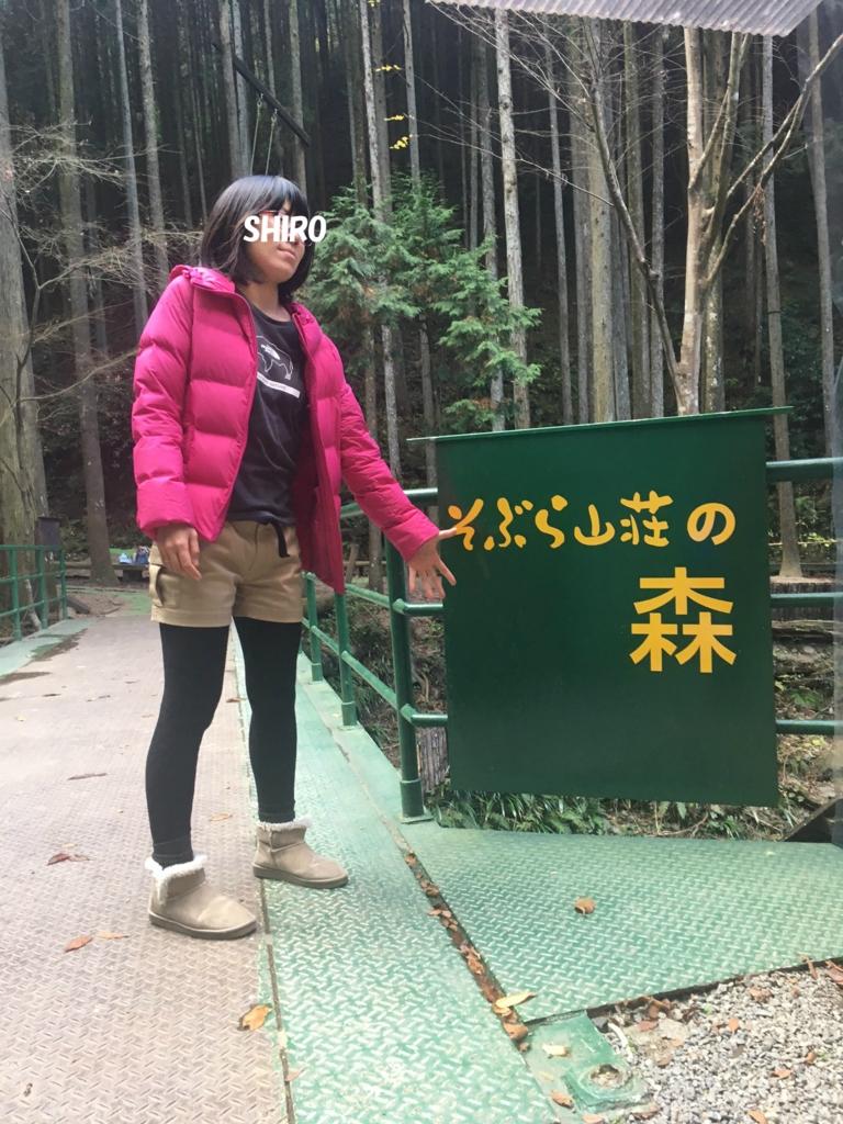 f:id:takowasaonigiri:20161210222916j:plain