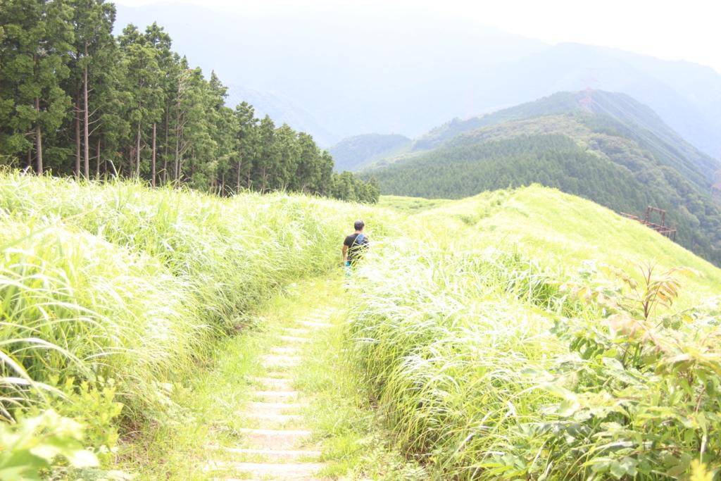 f:id:takowasaonigiri:20170805220222j:plain