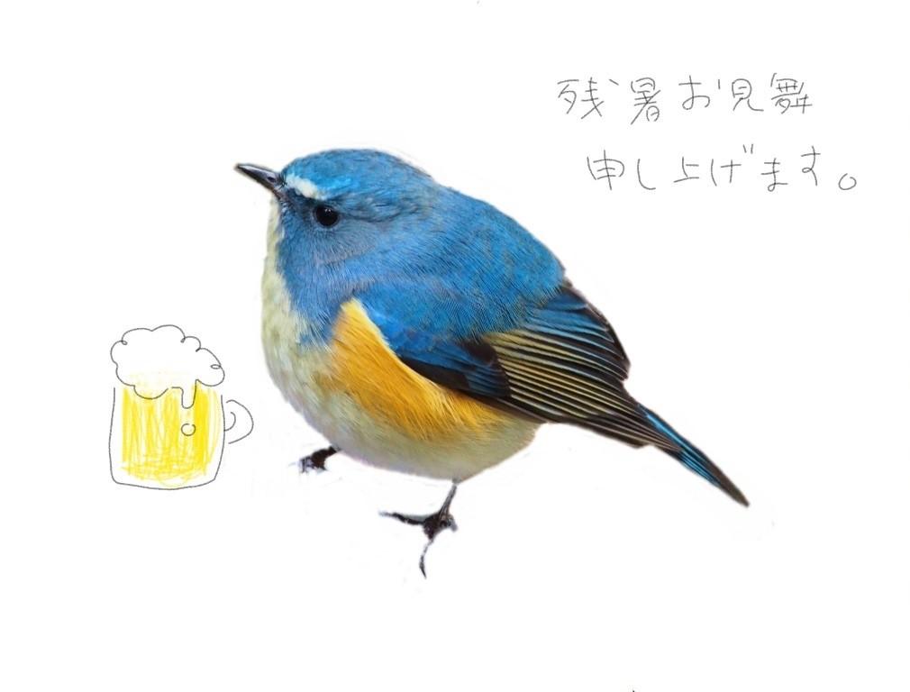 f:id:takowasaonigiri:20170814160532j:plain