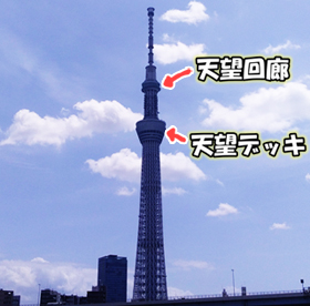 f:id:takoyakiroom:20201104215759j:plain