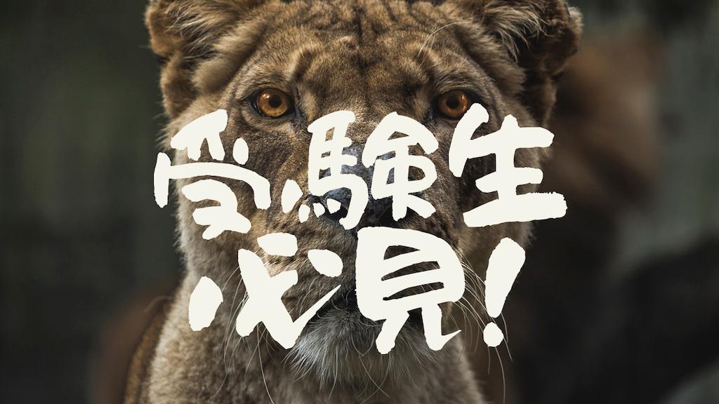 f:id:takoyakisann:20201219235208p:image