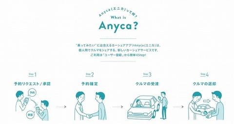 anyca_summary