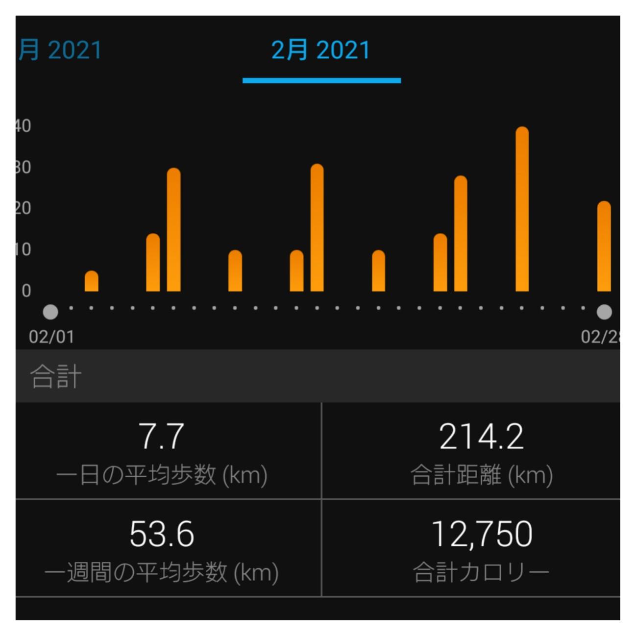 f:id:taku_run:20210228193839j:image