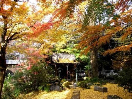 f:id:takuboku_no_iki:20101116172048j:image