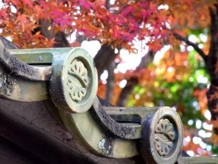 f:id:takuboku_no_iki:20111219170938j:image