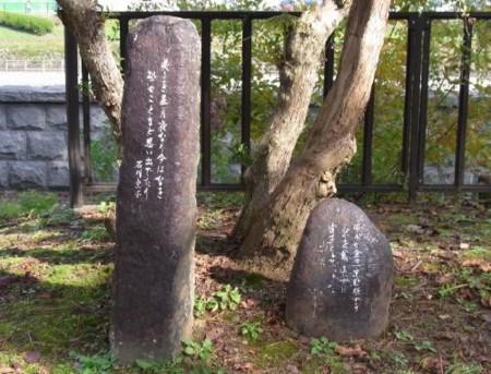 f:id:takuboku_no_iki:20120126193027j:image