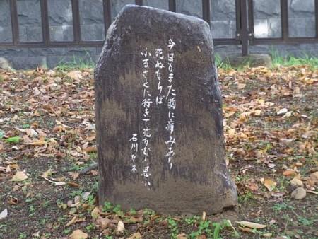 f:id:takuboku_no_iki:20120128044304j:image