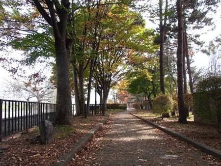 f:id:takuboku_no_iki:20120129044320j:image:w640