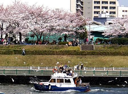 f:id:takuboku_no_iki:20120409184016j:image:w550