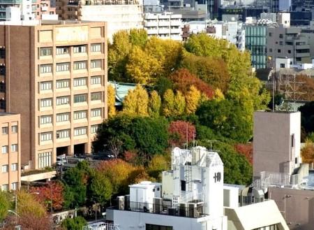 f:id:takuboku_no_iki:20121228165110j:image