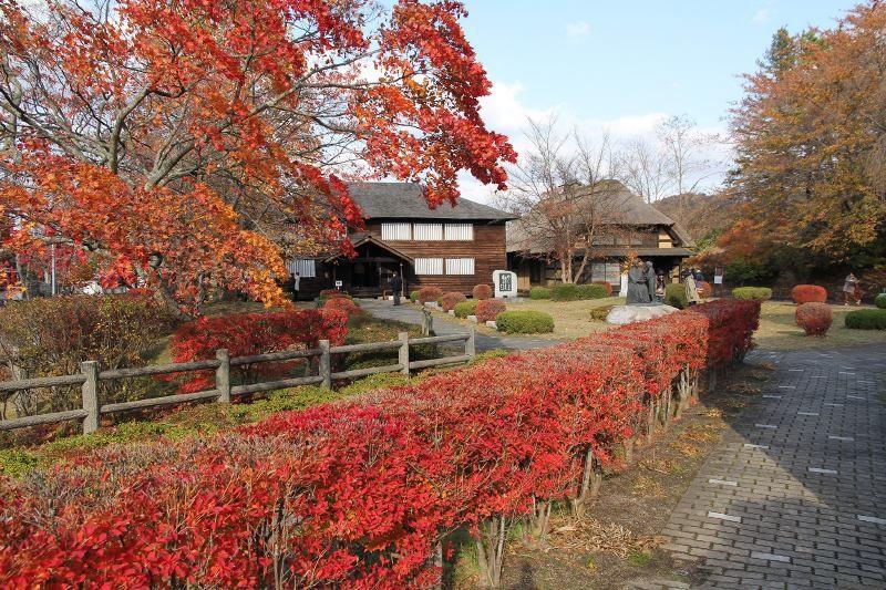 f:id:takuboku_no_iki:20161110182531j:image:w640