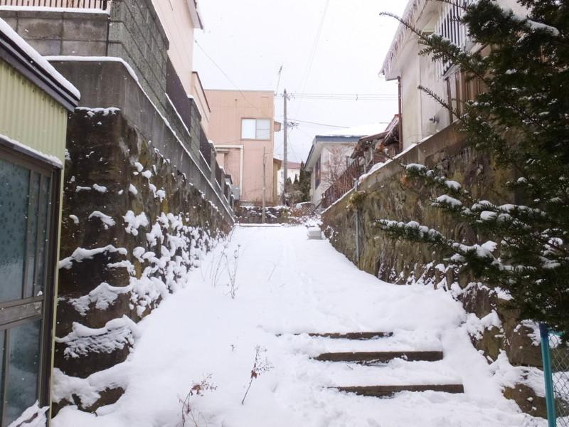 f:id:takuboku_no_iki:20170324164053j:image:w640