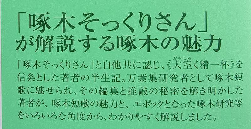 f:id:takuboku_no_iki:20190724144201j:plain
