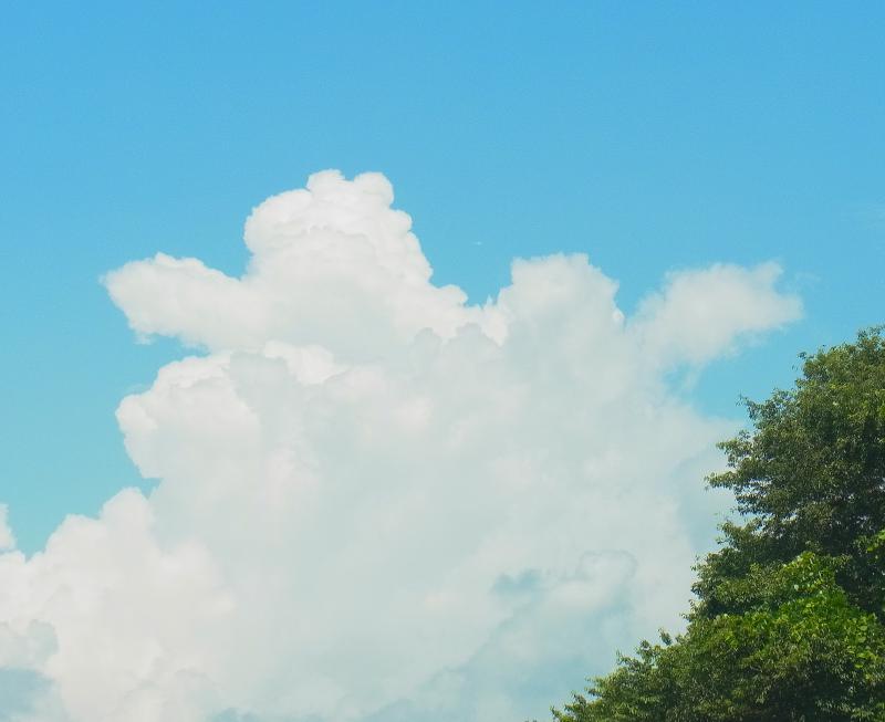 f:id:takuboku_no_iki:20190820154807j:plain