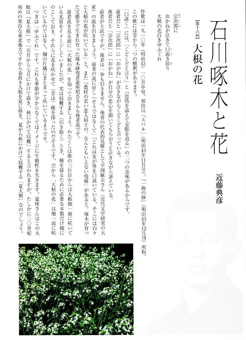 f:id:takuboku_no_iki:20201103162502j:plain