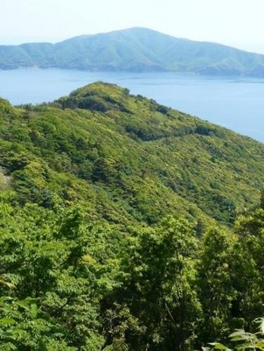 万緑の島2