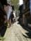 美保関町 石畳