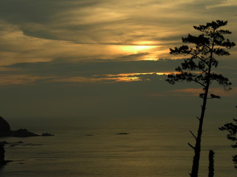 西ノ島 外浜1
