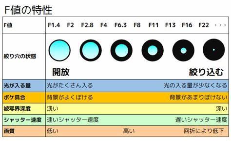f:id:takukayo:20200221224732j:plain