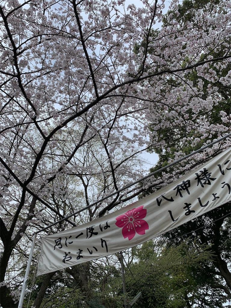 f:id:takumama0317:20190416110958j:image
