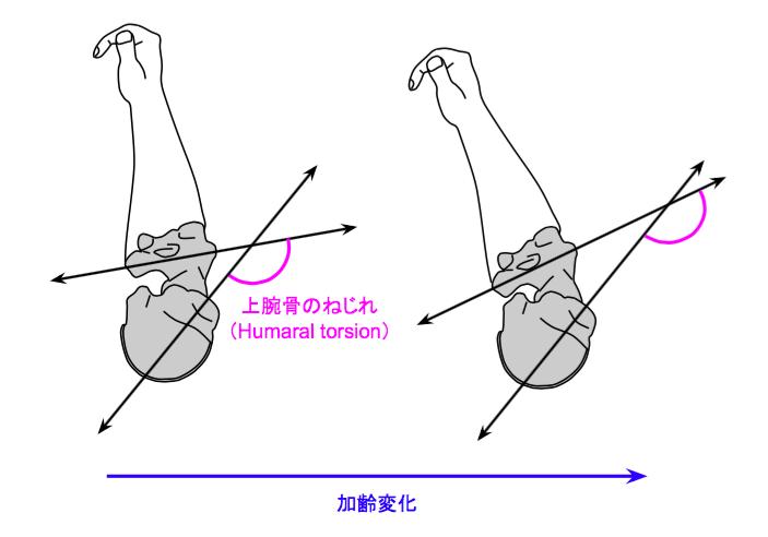 f:id:takumasa39:20170330193502p:plain