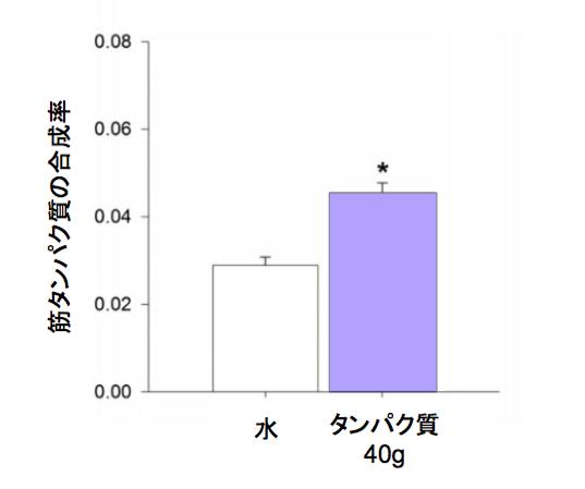 f:id:takumasa39:20170503120733p:plain