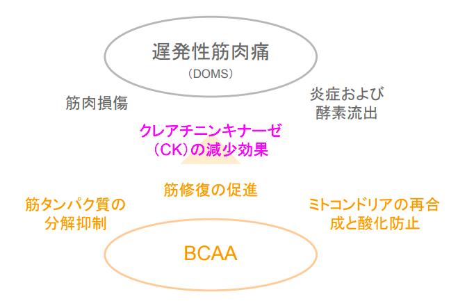 f:id:takumasa39:20171005151109p:plain