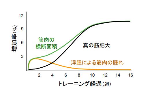 f:id:takumasa39:20180110200143p:plain