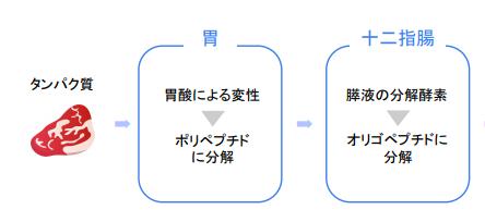 f:id:takumasa39:20180426140805p:plain