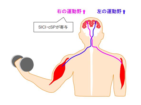 f:id:takumasa39:20180614120810p:plain