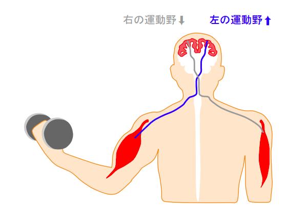 f:id:takumasa39:20180614142722p:plain