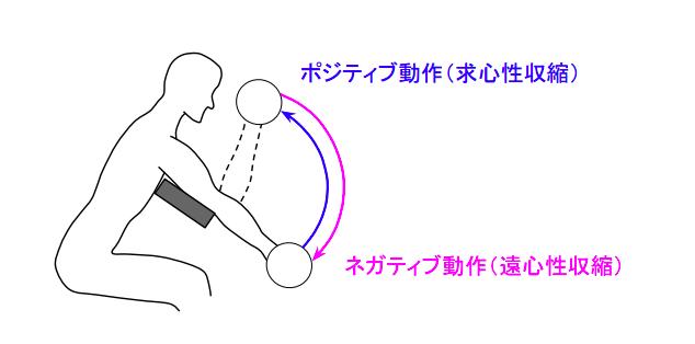 f:id:takumasa39:20180719152017p:plain